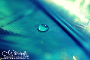WaterDrop. by MartinaPhotography