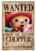 Chopper wanted by juju67
