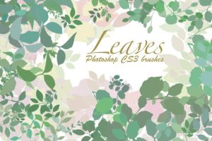 Leaves Photoshop CS3 Brushes by Marxwyn