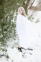 Snow Queen by photomystique
