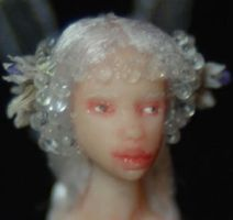 1'' cicely... closeup by chicorydell