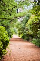 summer trail by PhotoTori