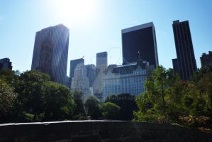 NYC _ Central Park2 by go4music