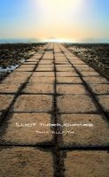 Illicit Thoroughfare by MightyT