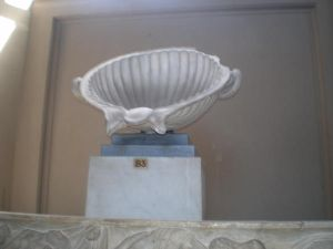 The Shell of Aphrodite