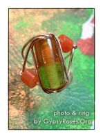 Wire Wrapped Ring by che4u