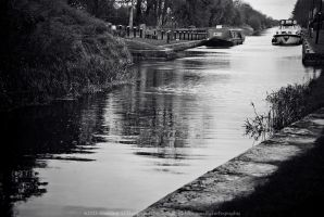 Abbeyshrule Canal by fluffyvolkswagen