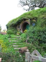 A hole for a hobbit by Gazing-at-the-Stars