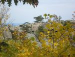 Old Rag Trail by nightember99