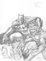 Batman and Wolverine by Theamat