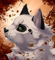 Autumn glory by Anerris