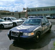 '10 Crown Vic cop car by Mister-Lou