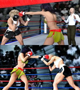 Guadalupe vs Marilyn 14 by bx2000b