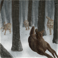 And I run from wolves by HungerMythos
