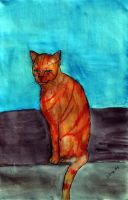 Roxi the Orange Cat by Raiderhater1013
