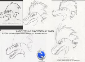 Justin Arisdale's Anger Expressions by Gneiss-chert