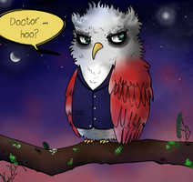 Doctor Hoo (Twelfth Doctor) by ice-cream-skies