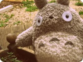 Oh Totoro by KisforKatieRose