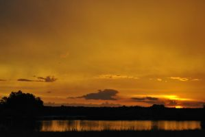 The Golden Pond by libertine1182