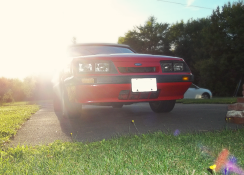 1986 Mustang Convertible - XLV by Walking-Tall