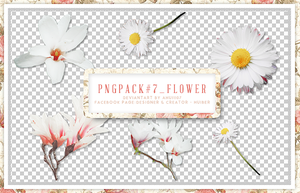 pngpack#7 flower by ahui1107