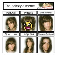 hair style MEME - with pics by wind-hime-kaze