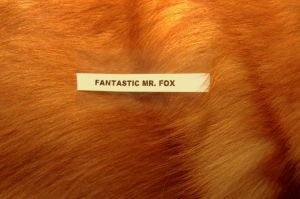 Fantastic Mr. Fox by cooleoness