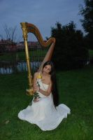 Harp stock 7 -with rose by Harpist-Stock
