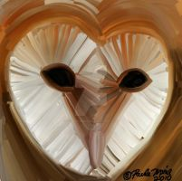 Barn Owl Heart Shaped Face by youlittlemonkey