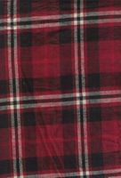 Red plaid by pandz2