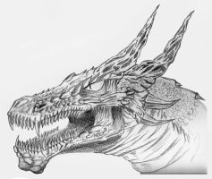 dragonhead by Warr3