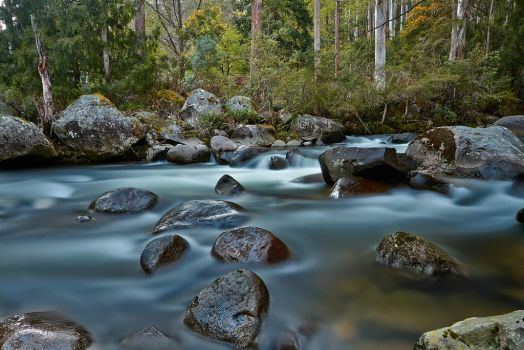 The River Wild by MarkLucey