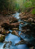 Moss Glen Creek by Brian-B-Photography
