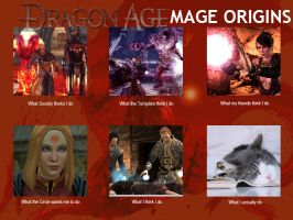 Dragon Age Mage: What My Friends Think I Do by InverseReality-2