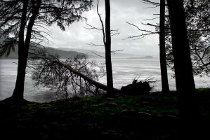 Catcleugh Squall by hold-steady