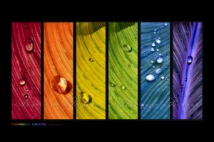 :: Rainbowdrops 5 :: by Liek