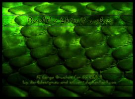 Reptile Skin Brushes by silver-