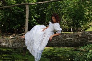In the mysterious forest_3 by anastasiya-landa