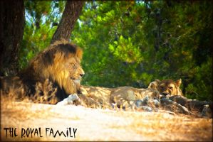 The royal family by calimer00