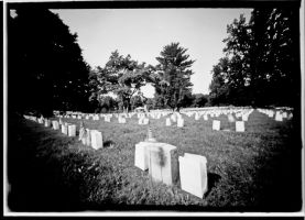 Fredericksburg National Cemetery I by rdungan1918