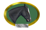 El Khalim-'11-Racing Demon by patchesofheaven74