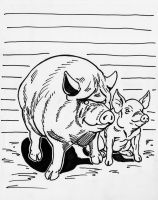 piggies by CoonDog69