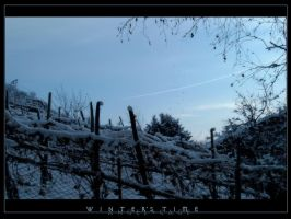 .Winter's.Time. by AngelCage