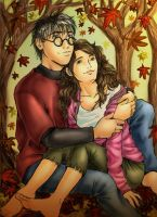 Autumn Harry and Hermione by amandioka