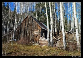 Cabin in the Woods by DarthIndy