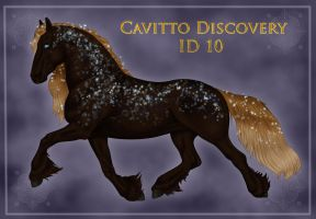 Cavitto Discovery ID 10 by Cloudrunner64