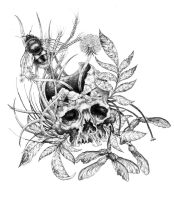 Skull and Weeds by urielstempest