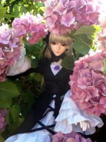 Suigintou BJD - The Beauty beneath the Flowers by AngyValentine