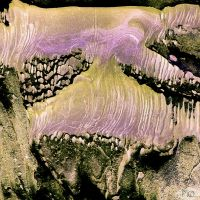 Nature's Abstracts - no 4 : Lilac by Plurkis