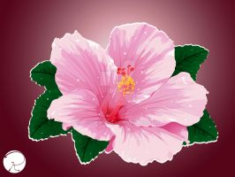 Hibiscus Flower by wardrake16